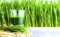 Juicing With Wheatgrass