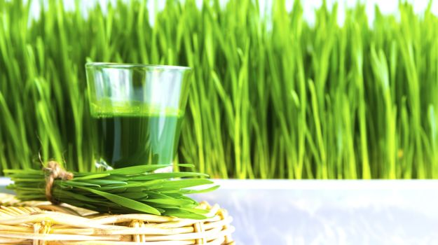 Juicing With Wheatgrass